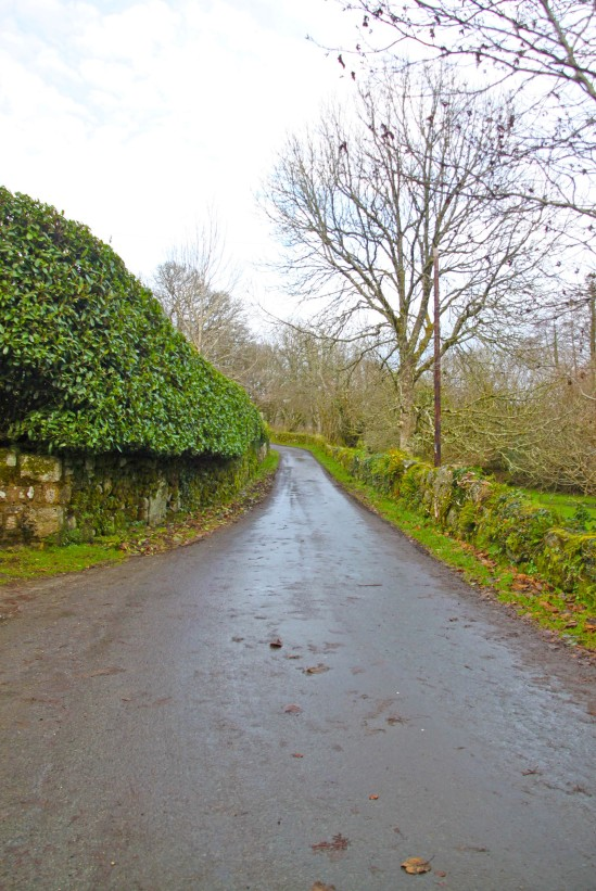 Rural Lane, Gidleigh, Devon, United Kingdom