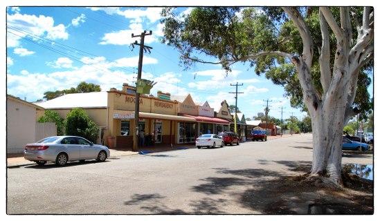 Dandaragan Street